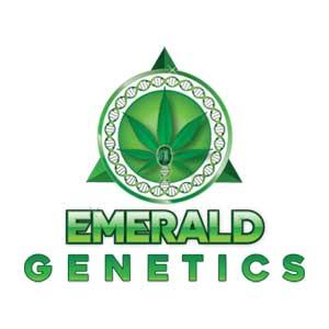Emerald Genetics